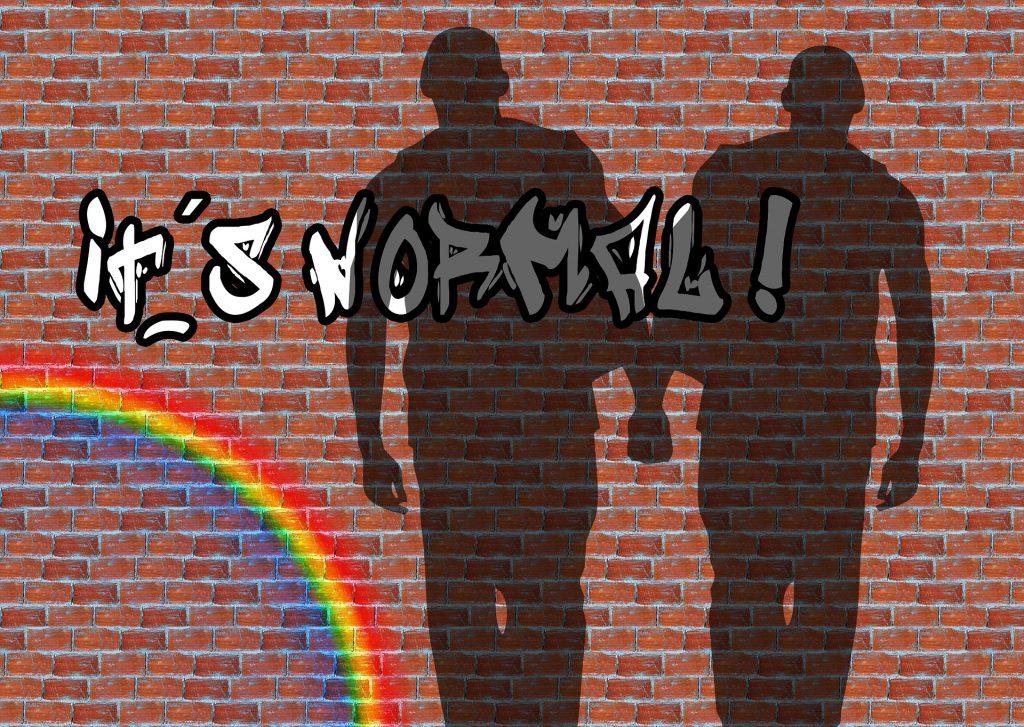 Eine Mauer aus Ziegeln auf die der Schatten eines homosexuellen Paares fällt, die Mauer ist mit einem Regenbogen und dem Schriftzug its normal besprüht.